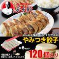 餃子 国産【 岡田屋餃子 生餃子 120個入り 約12人...